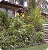 Quito Apartments & Flats, Vacation House